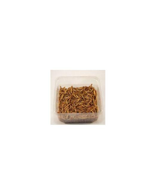 meelwormen-bakje